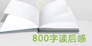 800字数