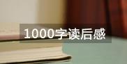 1000字数